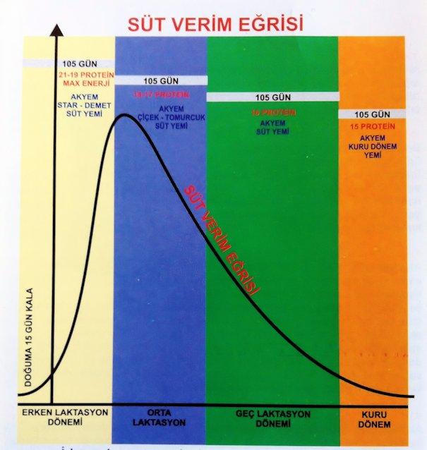 sut_verim_egrisi